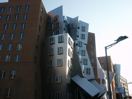 Profile view of the Stata Center