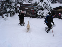 04505_bringing_in_avalanche_report