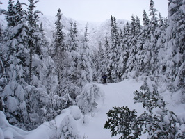 04509_plam_about_to_ski_down_sherburne