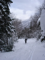 04528_brian_and_wildcat