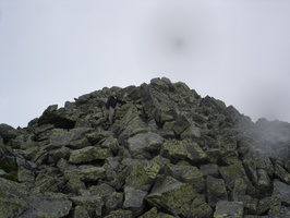 08646_plam_jefferson_summit