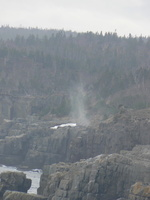 00623_spout_super_zoomed
