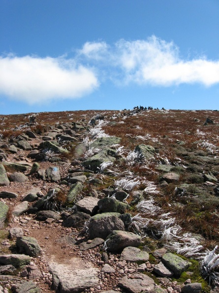0209_looking_back_on_trail_to_baxter_summit.jpg