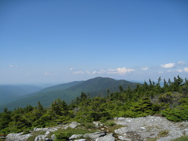 8690_ellen_from_abraham_summit