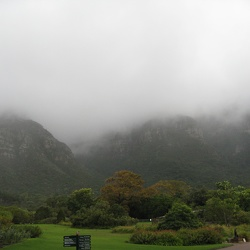 Kirstenbosch Gardens in the Rain, May 9
