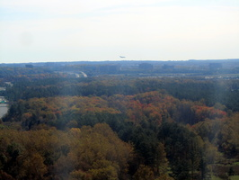 1169_forests_around_dulles
