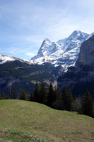 00951 eiger and meadow