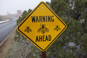 09783 warning bees ahead