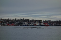 09398 ships and lunenburg harbourfront